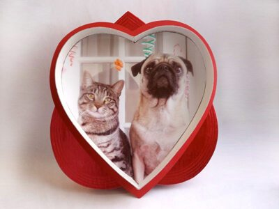 red Valentine's candy box with photo of cat and dog