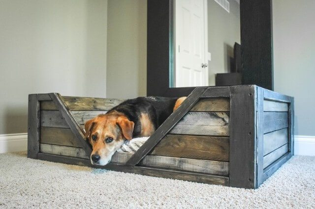 Very cool pet bed made of pallets with a design that allows your pet to see what everybody is up to.